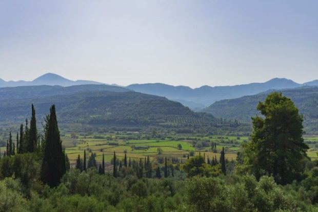 Landscape-e1581093855279